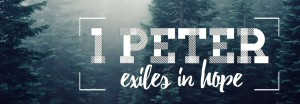 1 Peter Website Banner